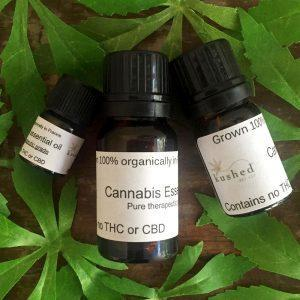 Kushed Hemp Cannabis Essential Oil